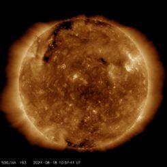 Ein aktuelles Bild der Sonne, aufgenommen vom Solar Dynamics Observatory am 18. August 2021. (Credits: Courtesy of NASA / SDO and the AIA, EVE, and HMI science teams)