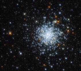 Hubble-Aufnahme des offenen Sternhaufens NGC 2164 in der Großen Magellanschen Wolke. (Credits: ESA / Hubble & NASA, J. Kalirai, A. Milone)