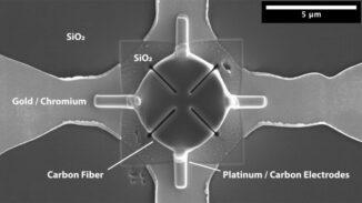 Schnitt einer Kohlefaser in einem mikroelektrischen Stromkreis. (Credits: Satoshi Matsuo and Nancy R. Sottos)