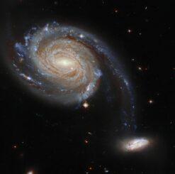 Hubble-Aufnahme des Galaxienpaars Arp 86. (Credits: ESA / Hubble and NASA, Dark Energy Survey, J. Dalcanton)
